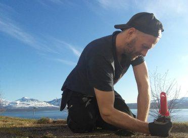 Hagearbeid, hagestell, fjerne mose, fjerne gress, vedlikeholde terrasse